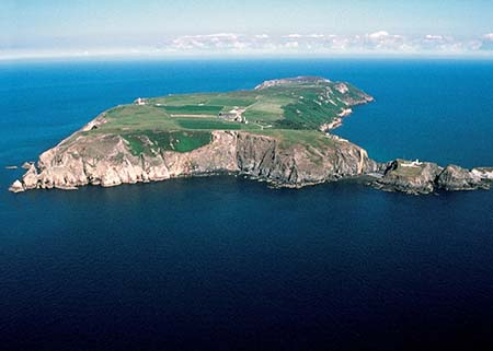 Image result for lundy island