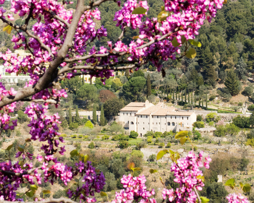 Sant'Antonio is a former monastery just outside Rome, and the perfect summer scape.